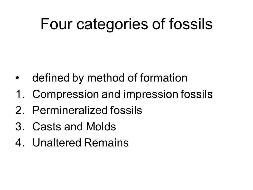 Four categories of fossils