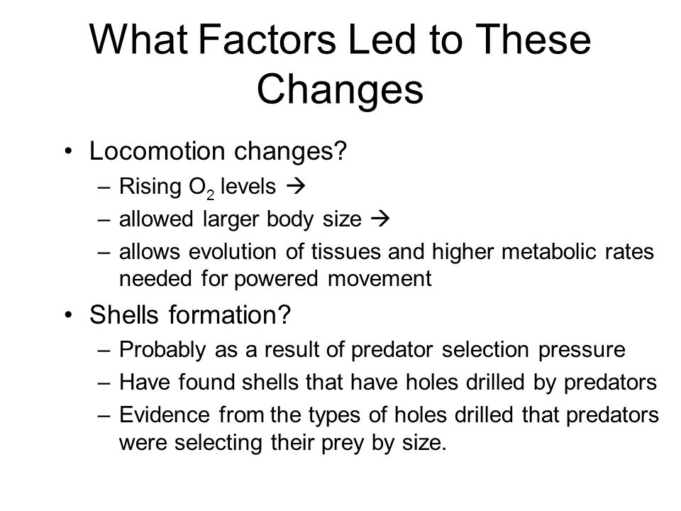 What Factors Led to These Changes