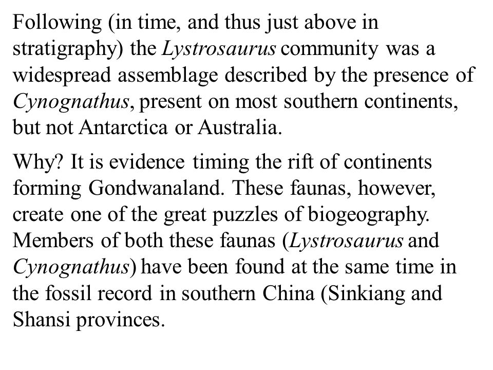 Following (in time, and thus just above in stratigraphy) the Lystrosaurus community was a widespread assemblage described by the presence of Cynognathus, present on most southern continents, but not Antarctica or Australia.