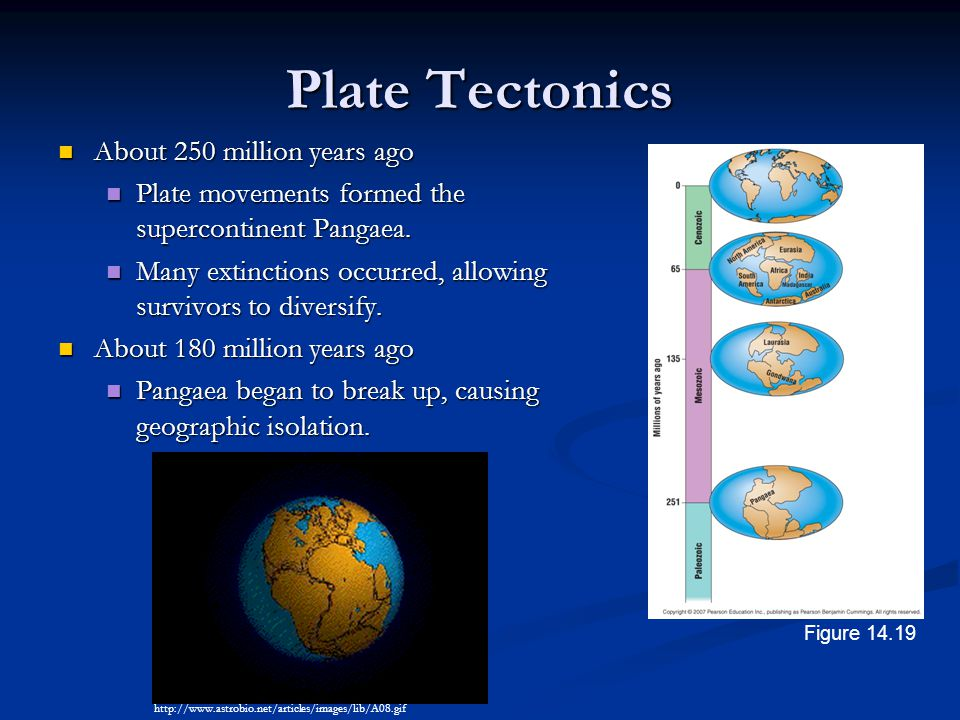 Plate Tectonics About 250 million years ago