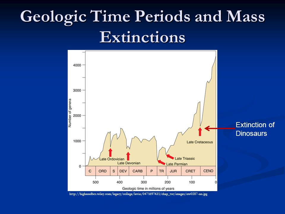 Geologic Time Periods and Mass Extinctions