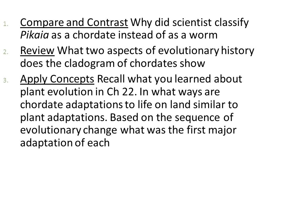Compare and Contrast Why did scientist classify Pikaia as a chordate instead of as a worm