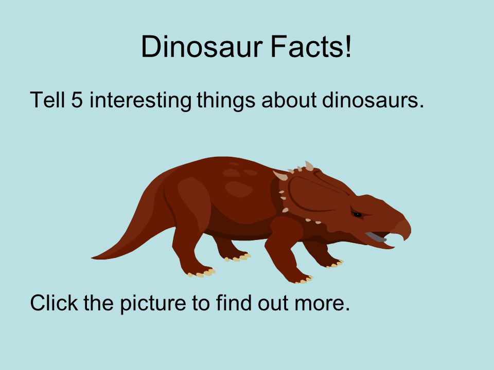 Dinosaur Facts! Tell 5 interesting things about dinosaurs.