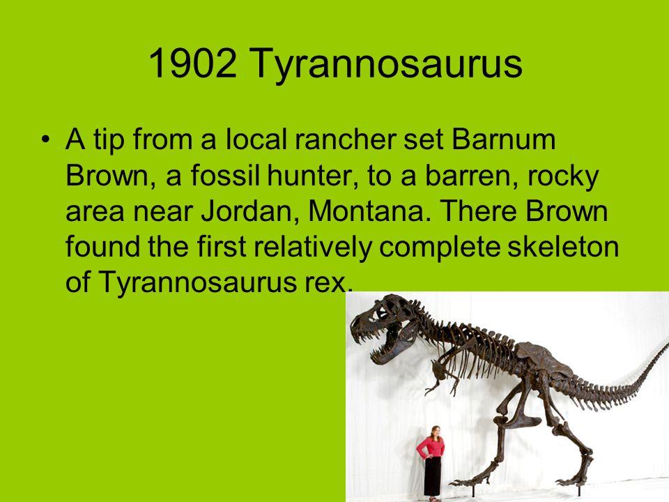 1902 Tyrannosaurus
