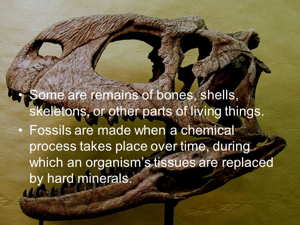 Some are remains of bones, shells, skeletons, or other parts of living things.