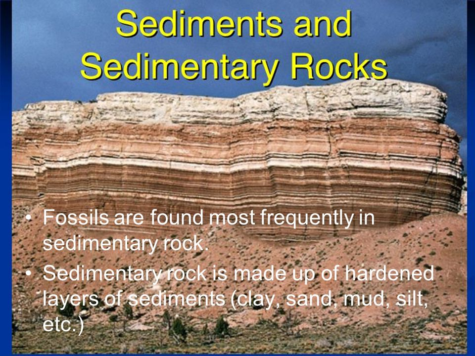 Fossils are found most frequently in sedimentary rock.