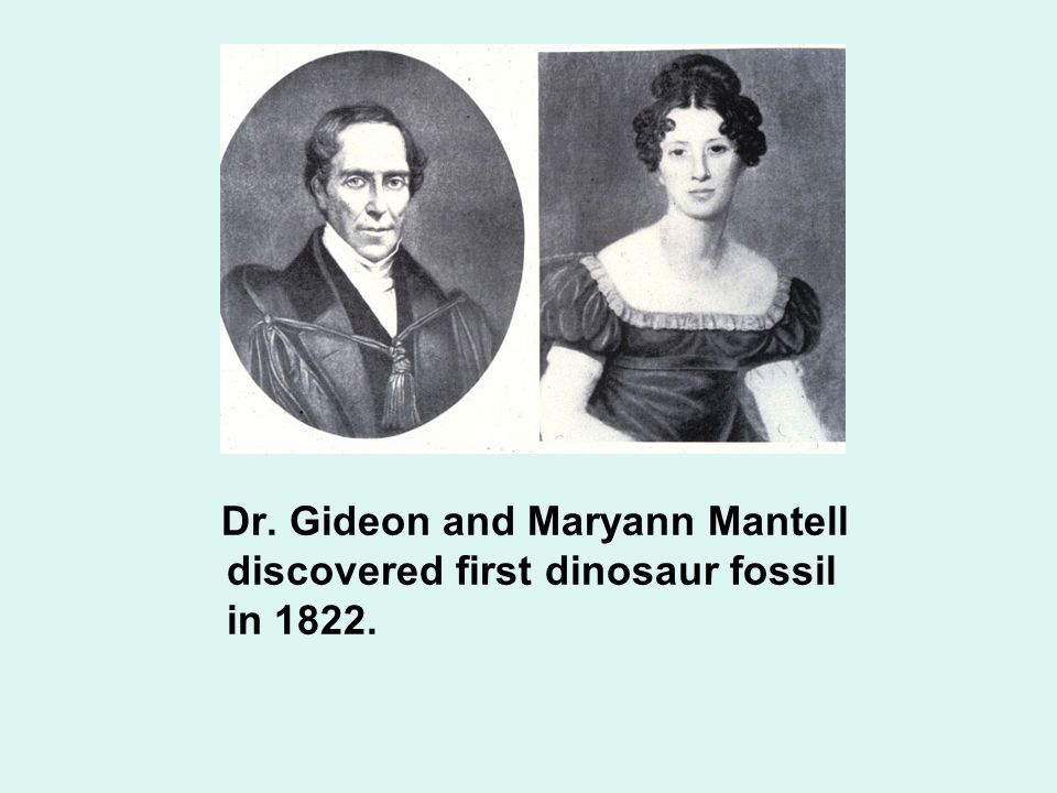 Dr. Gideon and Maryann Mantell discovered first dinosaur fossil in 1822.