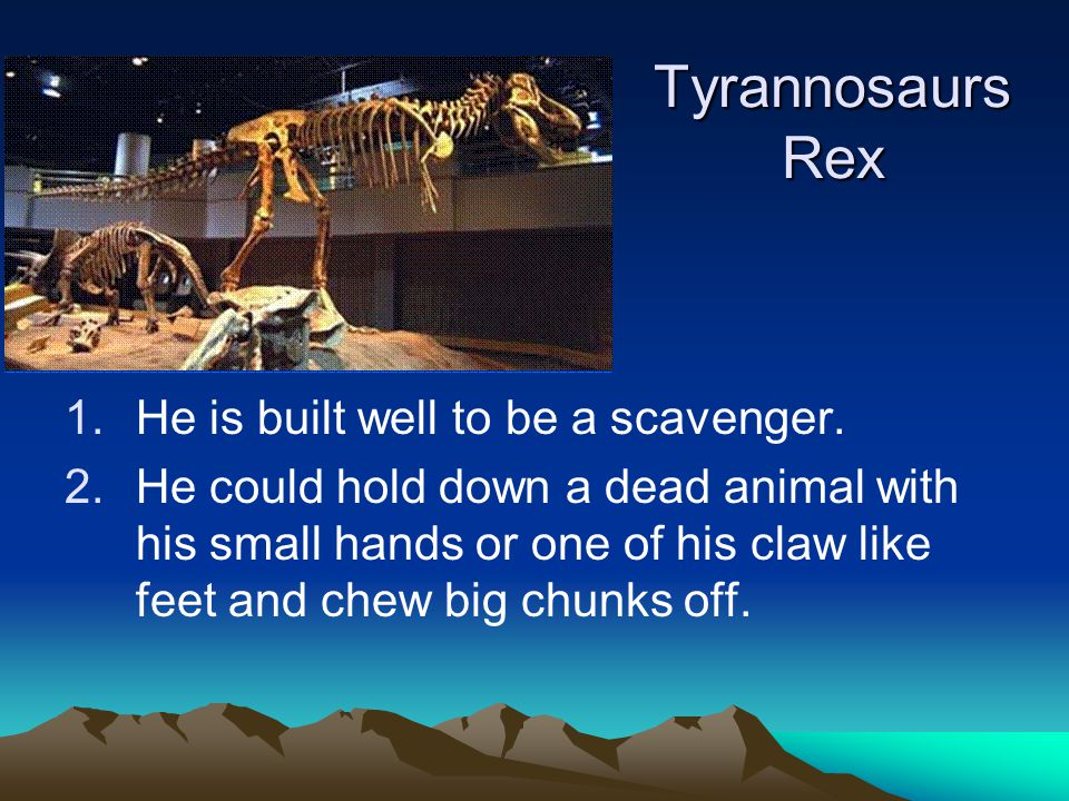 Tyrannosaurs Rex He is built well to be a scavenger.
