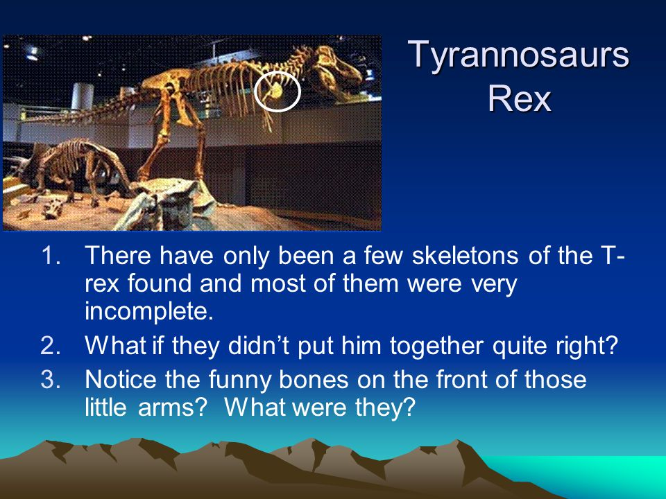 Tyrannosaurs Rex There have only been a few skeletons of the T-rex found and most of them were very incomplete.