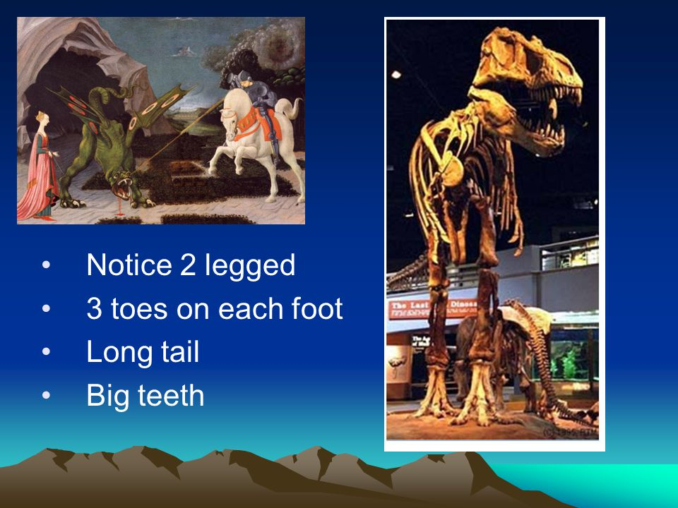Notice 2 legged 3 toes on each foot Long tail Big teeth