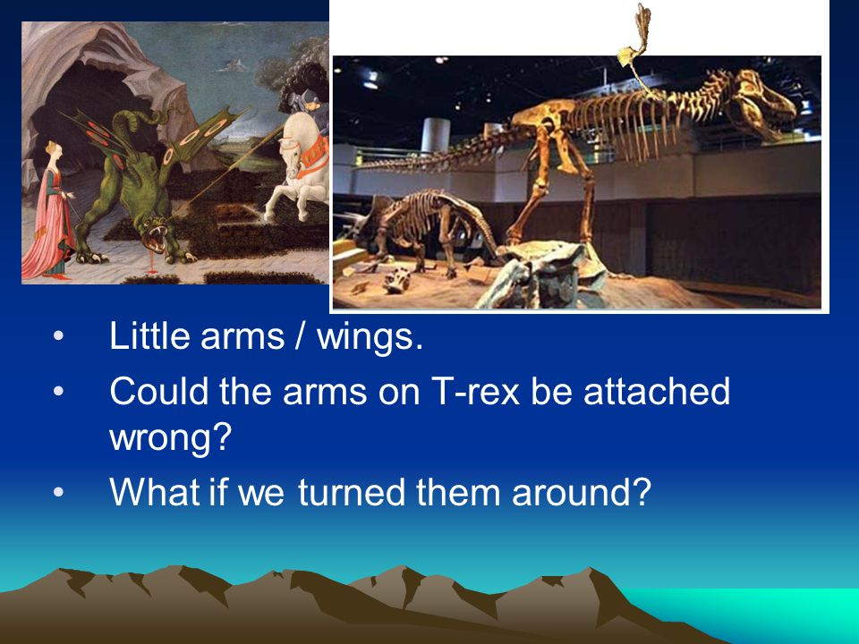 Little arms / wings. Could the arms on T-rex be attached wrong What if we turned them around