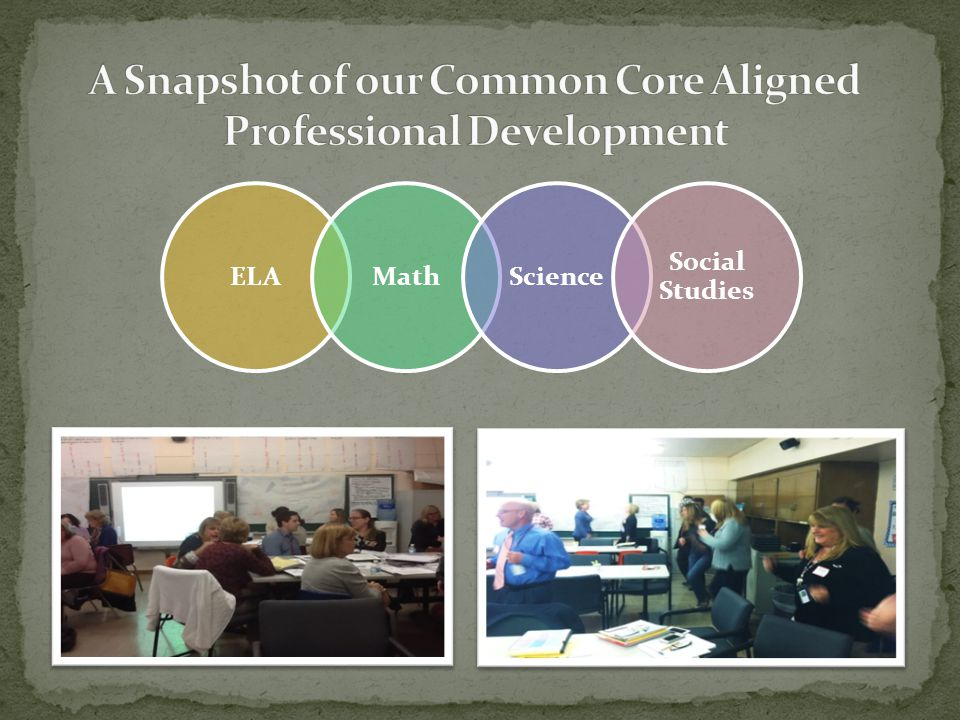A Snapshot of our Common Core Aligned Professional Development