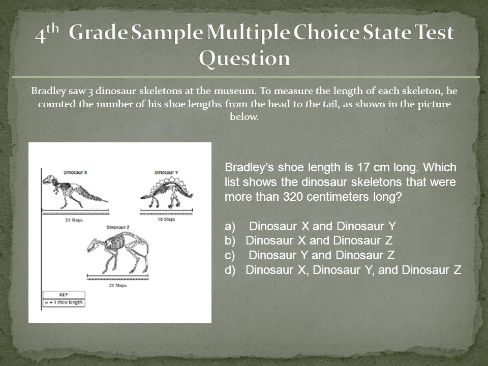 4th Grade Sample Multiple Choice State Test Question