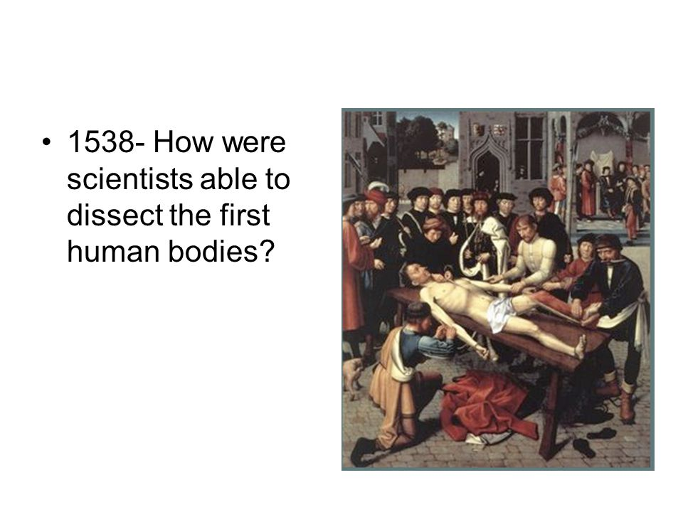 1538- How were scientists able to dissect the first human bodies