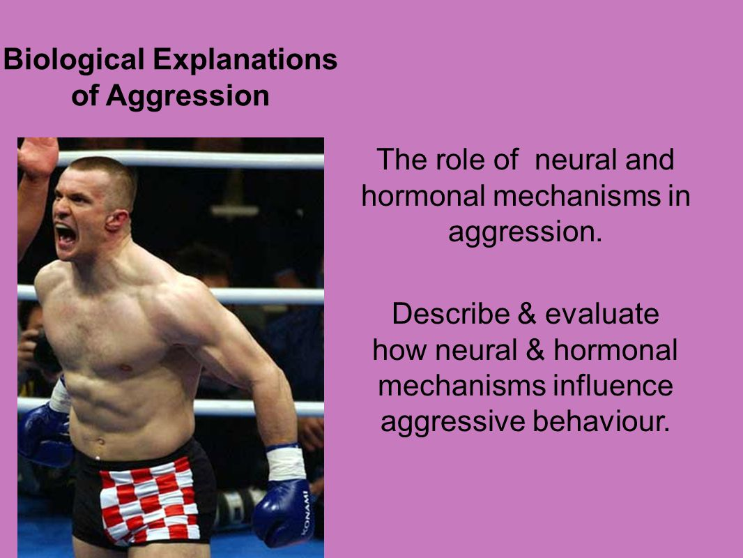 Biological Explanations of Aggression
