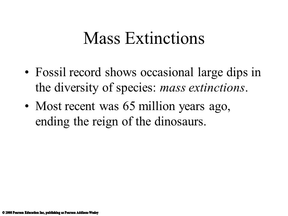 Mass Extinctions Fossil record shows occasional large dips in the diversity of species: mass extinctions.