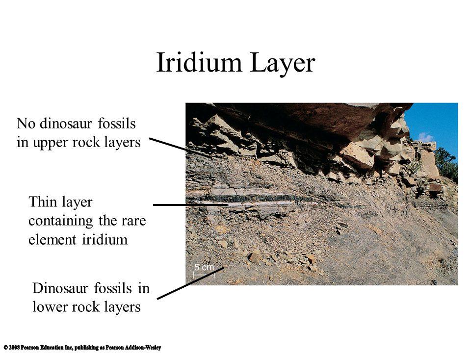 Iridium Layer No dinosaur fossils in upper rock layers
