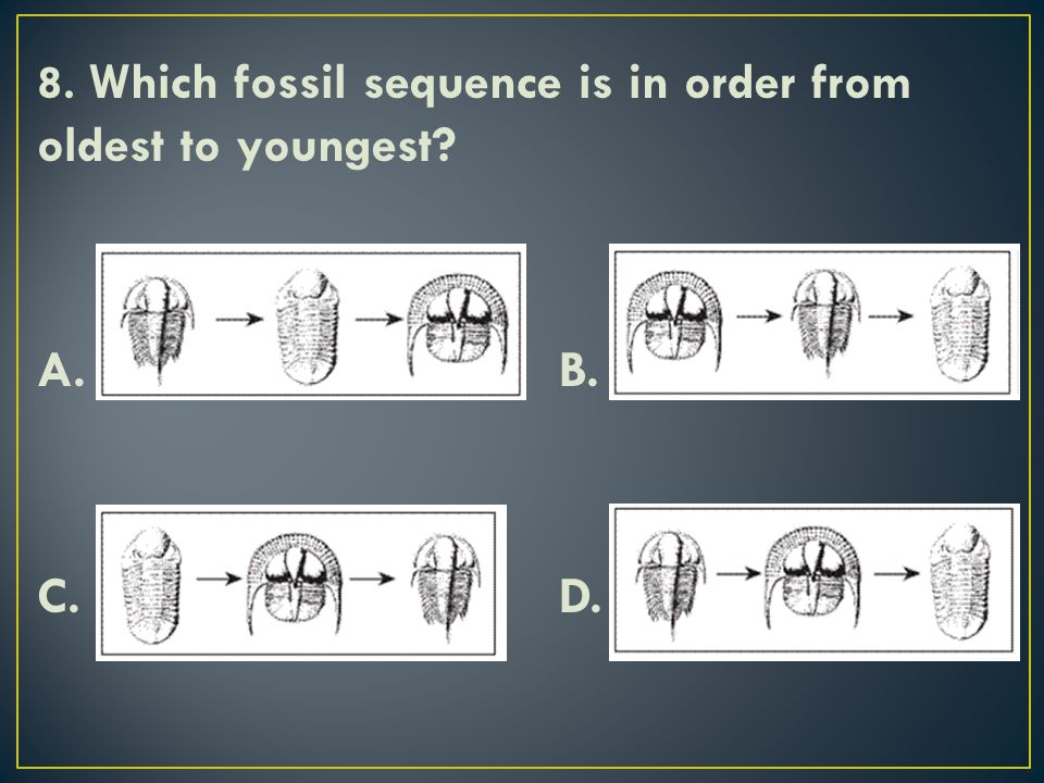 8. Which fossil sequence is in order from oldest to youngest