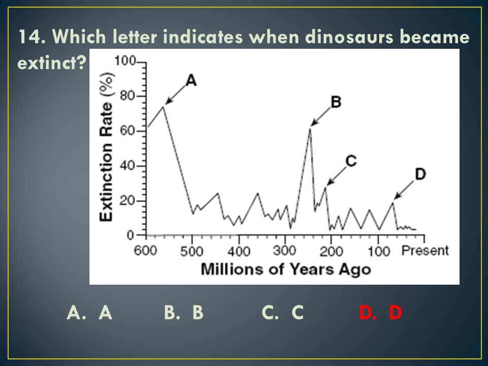 14. Which letter indicates when dinosaurs became extinct. A. A B. B C