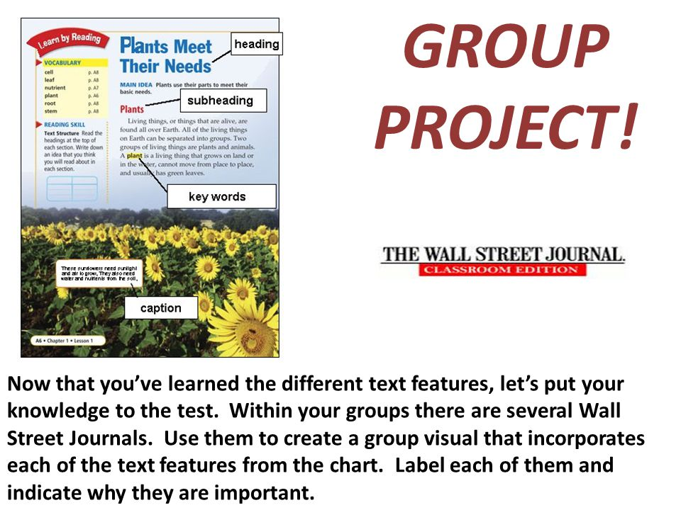 GROUP PROJECT!