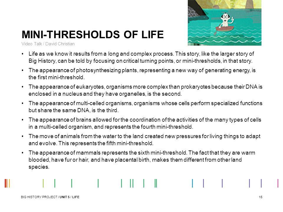 MINI-THRESHOLDS OF LIFE