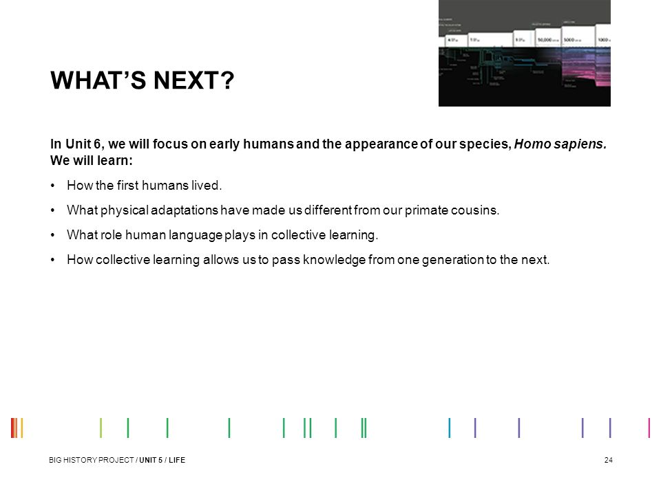WHAT'S NEXT In Unit 6, we will focus on early humans and the appearance of our species, Homo sapiens. We will learn:
