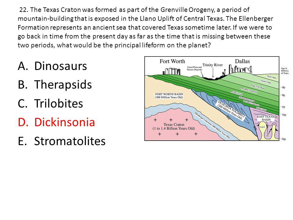 Dinosaurs Therapsids Trilobites Dickinsonia Stromatolites