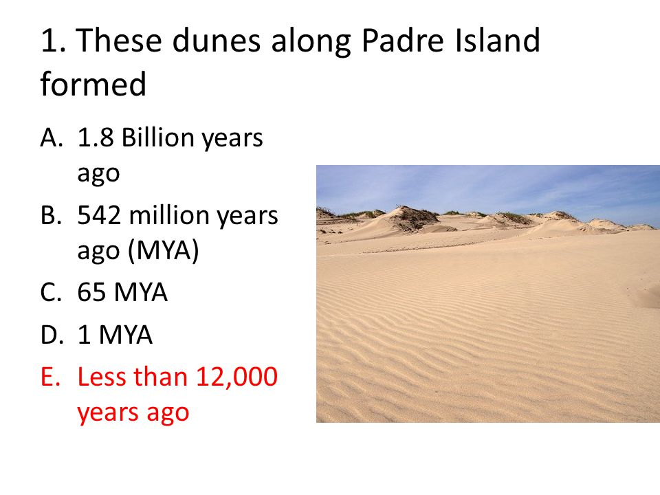 1. These dunes along Padre Island formed