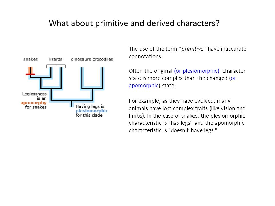 What about primitive and derived characters