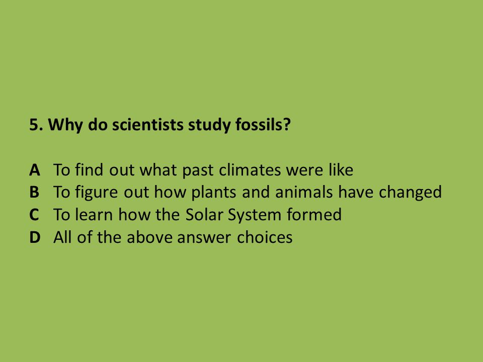 5. Why do scientists study fossils. A