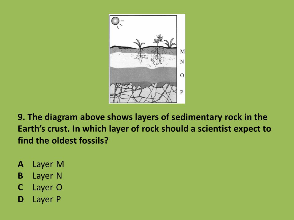 9. The diagram above shows layers of sedimentary rock in the Earth's crust.