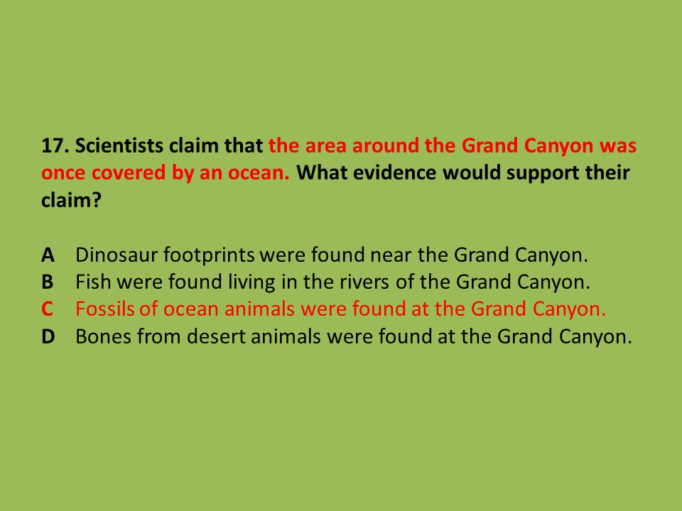 17. Scientists claim that the area around the Grand Canyon was once covered by an ocean.