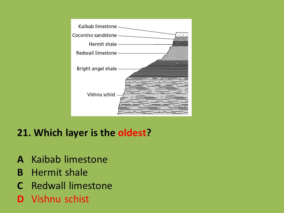 21. Which layer is the oldest. A. Kaibab limestone B. Hermit shale C