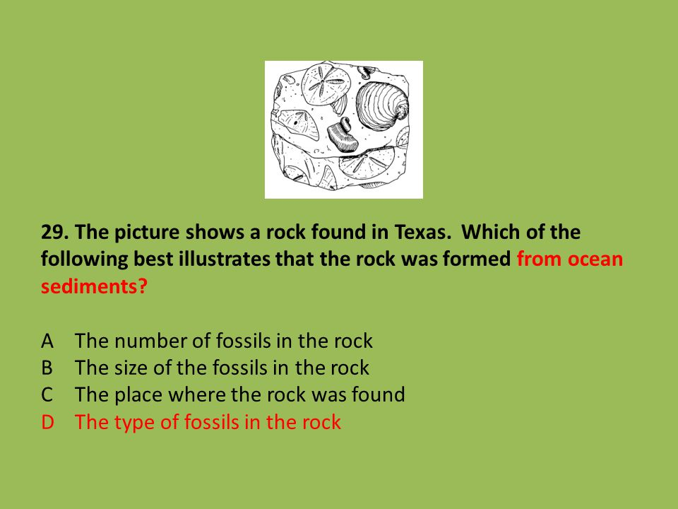 29. The picture shows a rock found in Texas