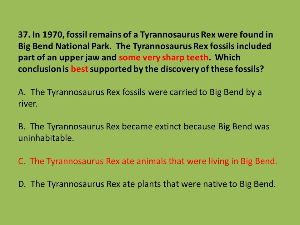 37. In 1970, fossil remains of a Tyrannosaurus Rex were found in Big Bend National Park.