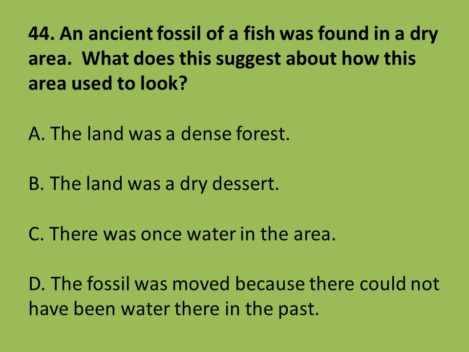 44. An ancient fossil of a fish was found in a dry area