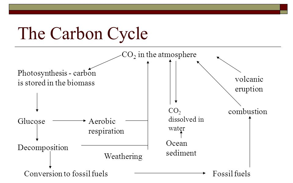 The Carbon Cycle CO2 in the atmosphere volcanic eruption
