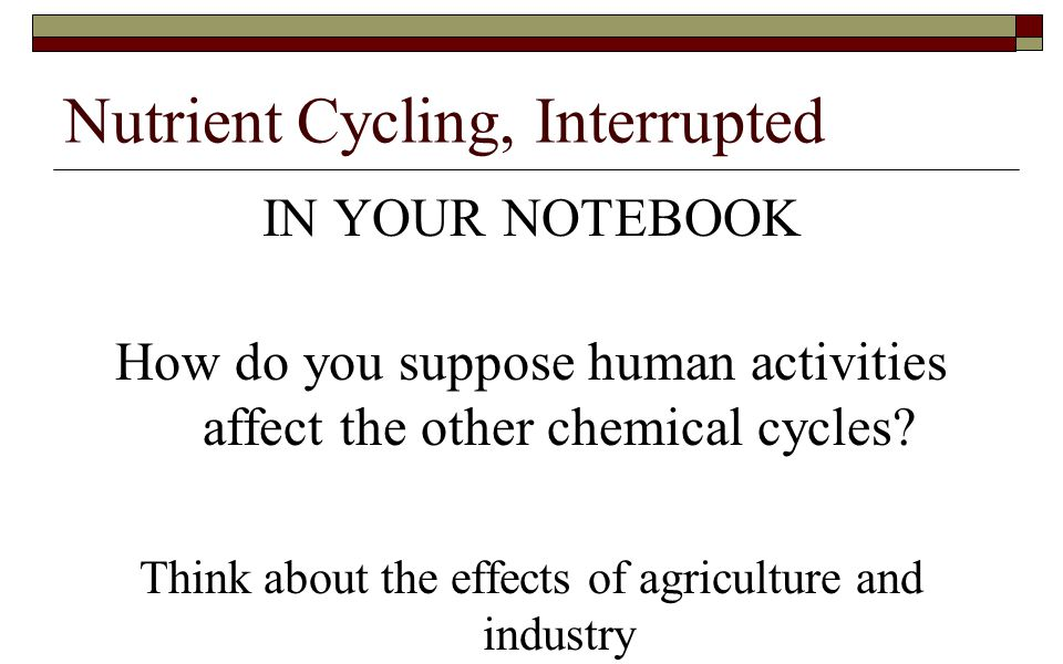 Nutrient Cycling, Interrupted