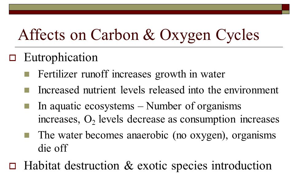 Affects on Carbon & Oxygen Cycles