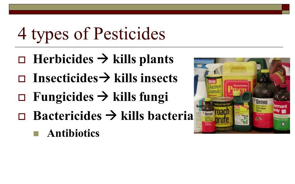 4 types of Pesticides Herbicides  kills plants
