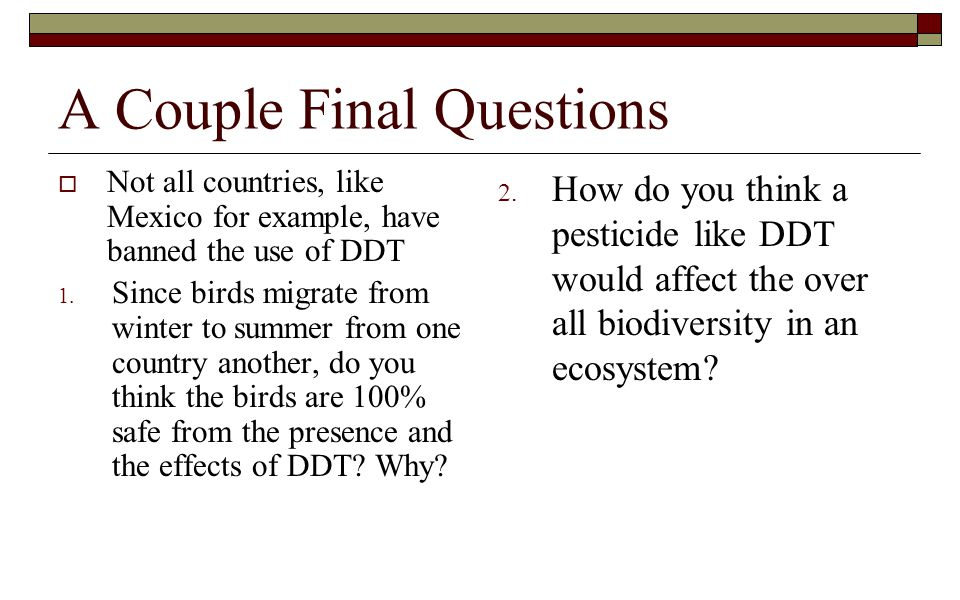 A Couple Final Questions