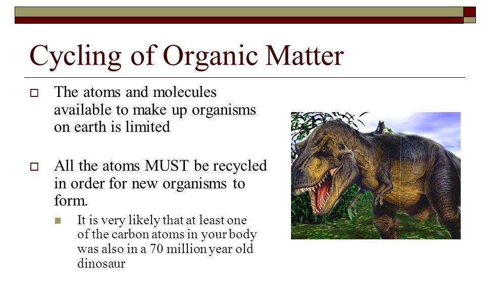 Cycling of Organic Matter