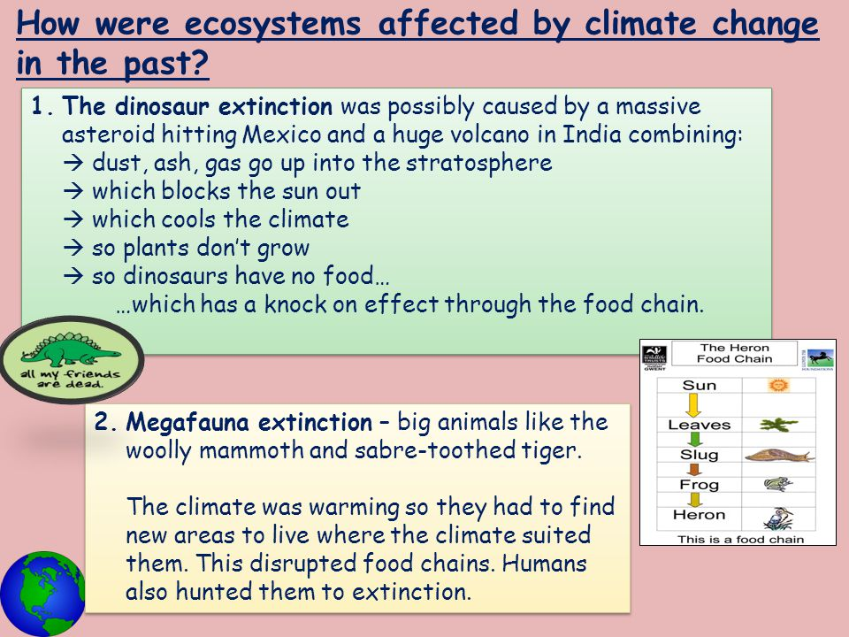How were ecosystems affected by climate change in the past