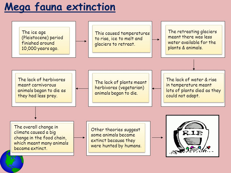 Mega fauna extinction This caused temperatures
