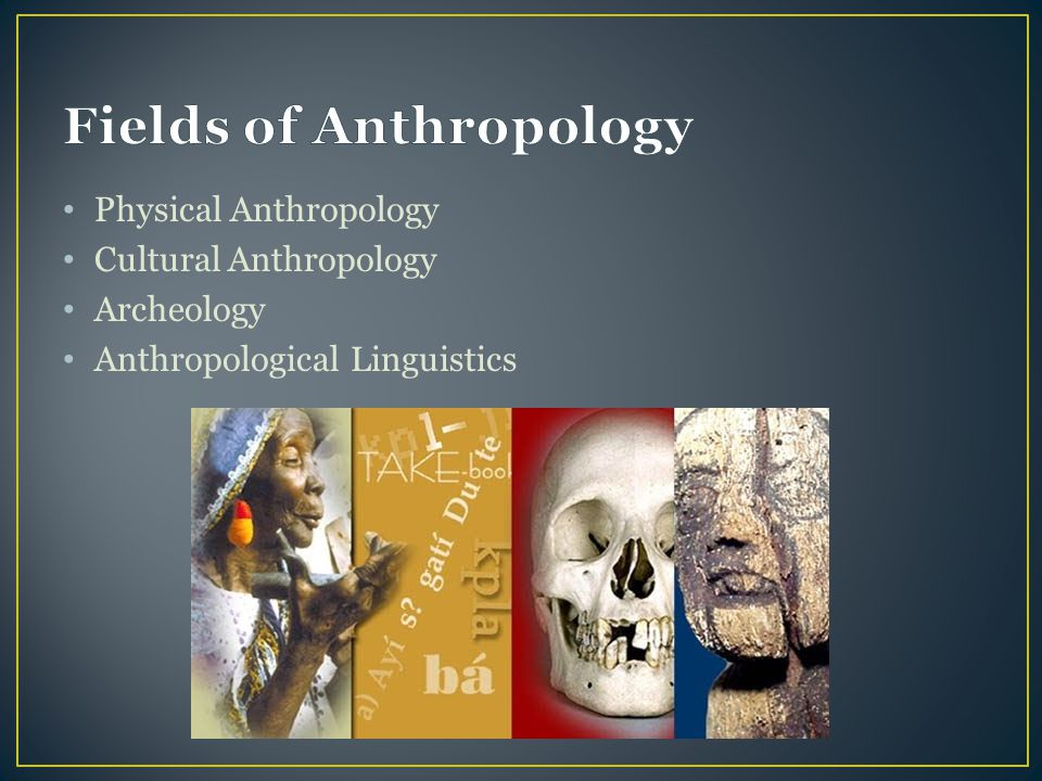 Fields of Anthropology