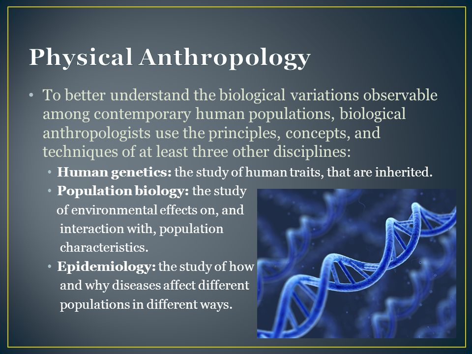 Physical Anthropology