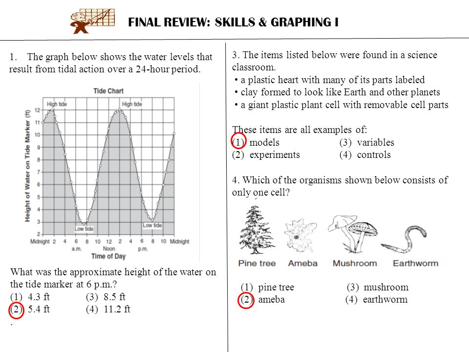 FINAL REVIEW: SKILLS & GRAPHING I