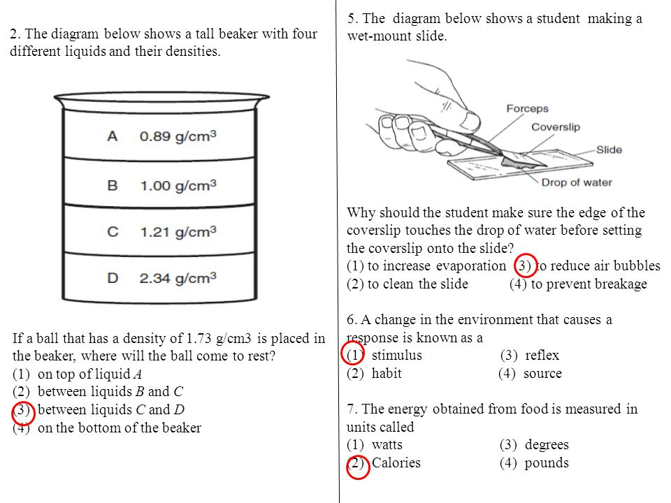 5. The diagram below shows a student making a