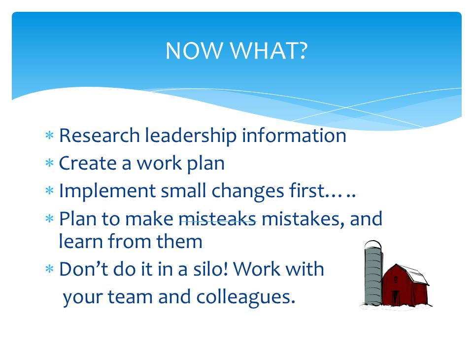 NOW WHAT Research leadership information Create a work plan