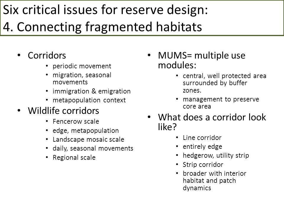 Six critical issues for reserve design: 4
